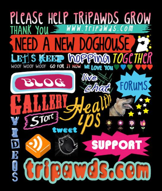 click to enlarge support upgrade to imporve tripawds forum speed