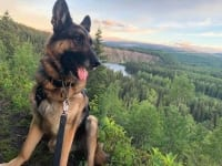 Wyatt at Tumbler Ridge in British Columbia