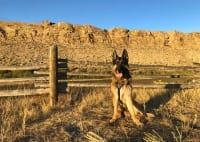 Wyatt in Sinclair, Wyoming