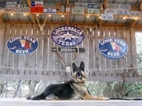Wyatt on stage at Luckenbach, Texas