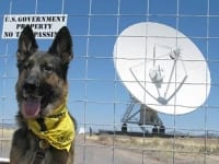 Wyatt at the Very Large Array, New Mexico