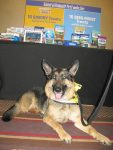 Wyatt at BlogPaws Natural Balance Booth