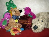 favorite toys and rainbow bridge remains of jerry