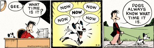 Mutts Comic Strip Featured On PBS Nature