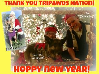 Tripawds New Year 2017