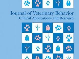 phantom pain in dogs study