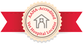 #AAHADay, AAHA-accredited clinics, AAHA-accreditation, AAHA veterinary clinics, quality veterinary care, best vets