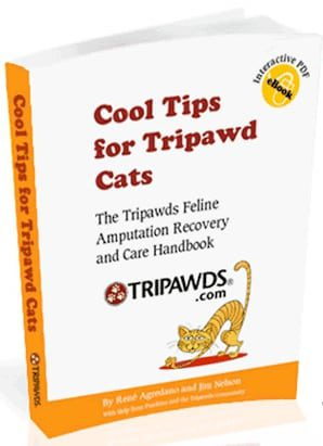 Cool Tips for Tripawd Cats book