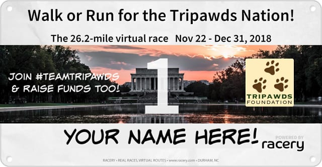 Racery Run for Tripawds Foundation