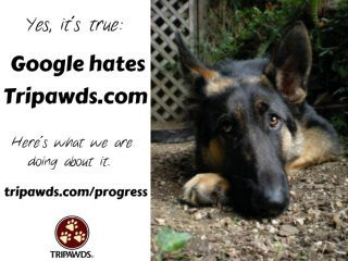 Tripawds Discussion Forums