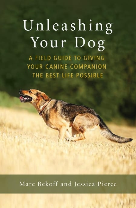 field guide to unleashing your dog