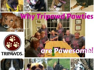 plan Tripawds parties