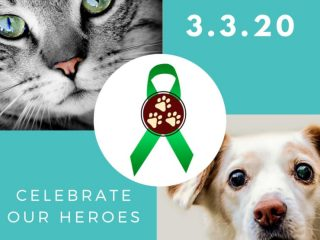 TriDay 2020 Celebrates Amputee Pets