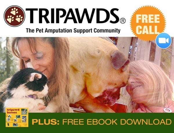 Tripawds Pet Amputation Chat
