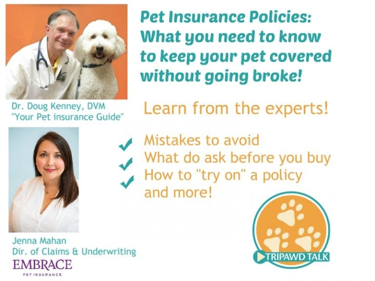 Pet insurance for Tripawds