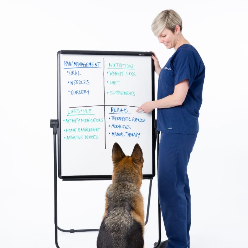 How to manage arthritis in Tripawds