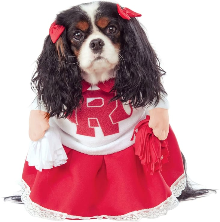 Funny Dog Cheerleader Costume