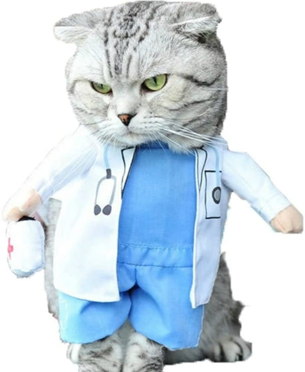 Cat Dog Doctor Tripawd Costume