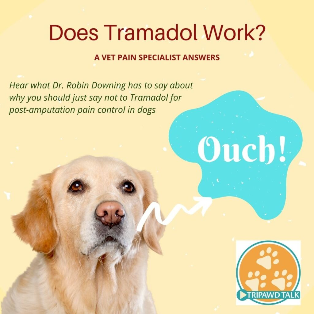 Does Tramadol help dogs