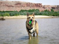 Jerry plays in San Juan River Juy 2007