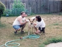 Jim and Rene Bathe Puppy Jerry