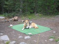 At Seedhouse campground in the Routt national Forest