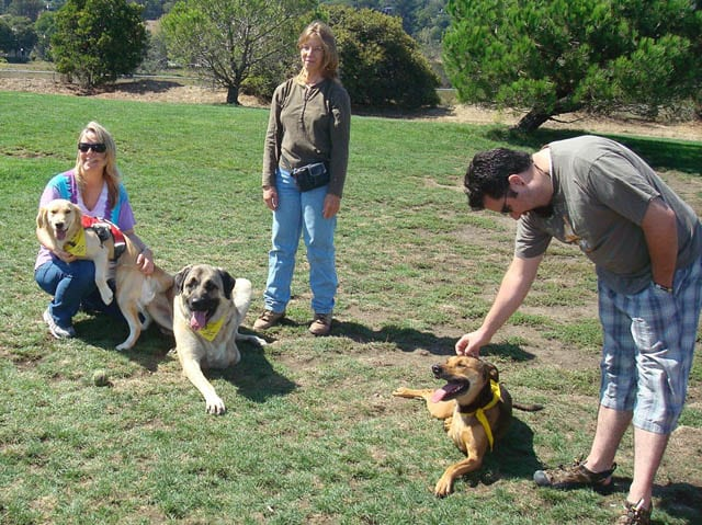 Northern California Team Tripawds