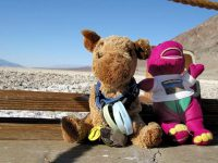 Spirit Jerry and Barney at Badwater Death Valley, CA