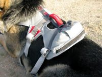 Ruff Wear Doubleback Dog Climbing Harness