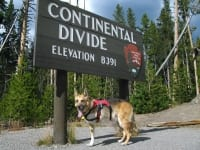 Jerry crosses the Continental Divide, again.