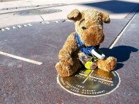 Spirit Jerry Sits on the Four Corners State Marker
