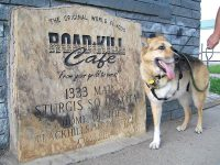 At the Roadkill Cafe in Sturgis, ND
