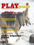 PlayPupMagazine features tripawd lover Jerry
