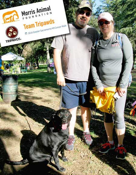 pet cancer fight, tripawd, amputee, bone cancer, morris animal foundation