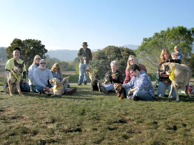 Mill Valley Dog Park Tripawd Party