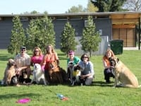 Pacific Northwest Tripawds Pawty