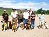 Three Legged Dogs at Colorado Tripawds Party